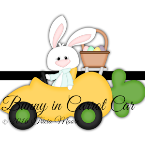 Bunny in Carrot Car