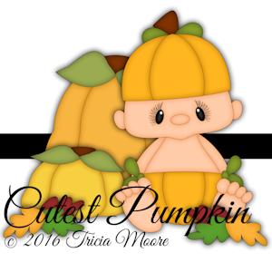 Cutest Pumpkin