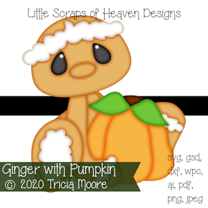 Ginger with Pumpkin