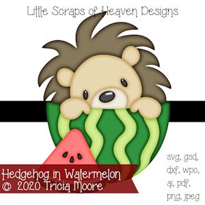 Hedgehog in Watermelon