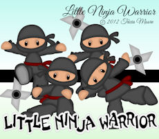 Little Ninja Warrior