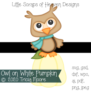 Owl on White Pumpkin