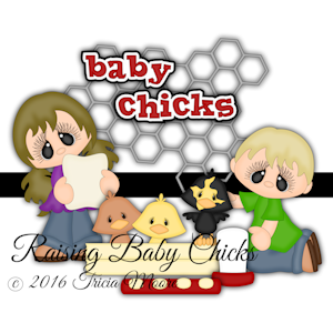 Raising Baby Chicks