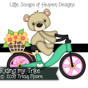 Riding my Trike
