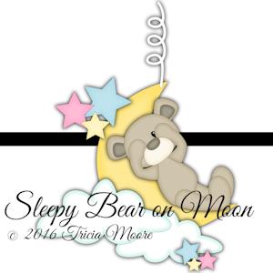 Sleepy Bear on Moon